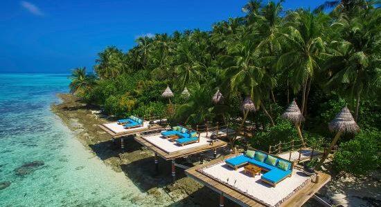 aaaveee-nature-s-paradise